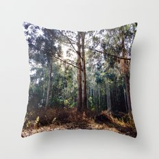 Presidio of San Francisco Throw Pillow