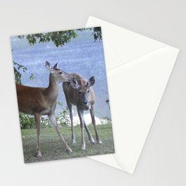 Early Evening Visitors Young Deer -Debra Cortese photo art Stationery Cards