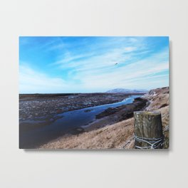 Beachcombing Coloured Metal Print