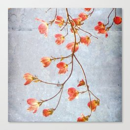 Flourish Canvas Print