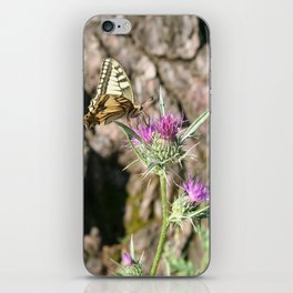 Scarce Swallowtail Butterfly and Thistle iPhone Skin