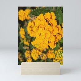 Yellow Blossom Mini Art Print