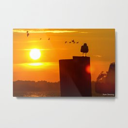 Sit Tight Metal Print