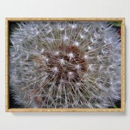Dandelion Seeds Serving Tray