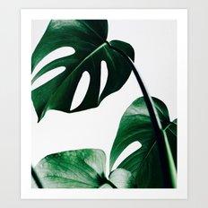ELEGANT MONSTERA CLUSTER PATTERN Art Print