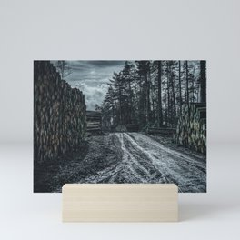 Poltery Site (Wood Storage Area) After Storm Victoria Möhne Forest 5 dark Mini Art Print
