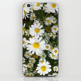 Daisys iPhone Skin