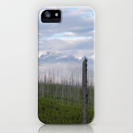 Reclaiming the Forest iPhone Case