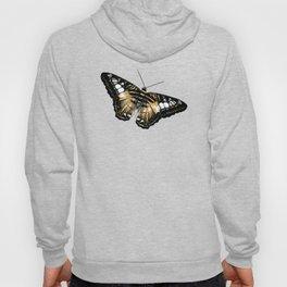 Papillon jaune et noir Hoody