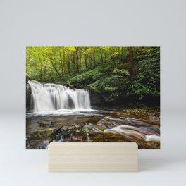 Appalachian Waterfall VII - Ricketts Glen Adventure Mini Art Print