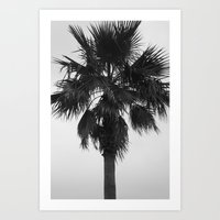 palm Art Prints featuring Palm by Alwayzgreener