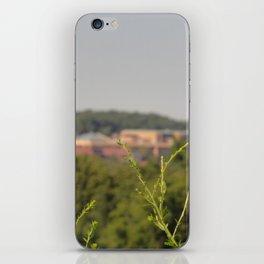 Ann Arbor MI iPhone Skin
