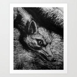 ROA. Art Print