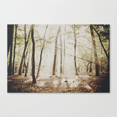 In a Dream Canvas Print