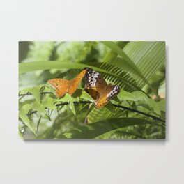 Cruiser Butterfly - pair Metal Print