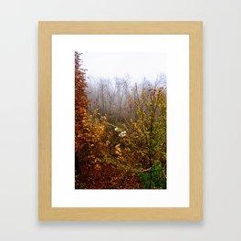 End of November  Framed Art Print