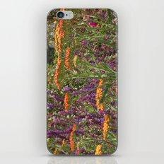 Botanical Garden Colour iPhone & iPod Skin