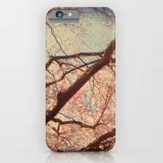 Dream of Me iPhone 6s Slim Case