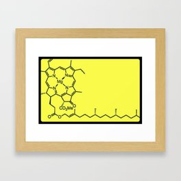 Chlorophyll Framed Art Print