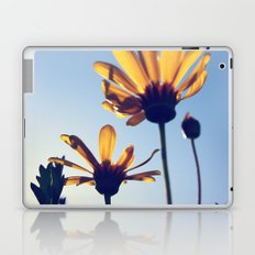 Spring Comes Laptop & iPad Skin