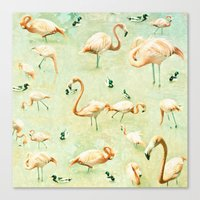 flamingos Canvas Prints featuring Flamingos by Lisa Argyropoulos