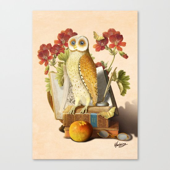 Apprentice Owl Canvas Print