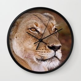 Lioness in Africa, wildlife Wall Clock