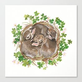 Bunny Nest Canvas Print