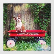 Cuteness in a Wagon Canvas Print