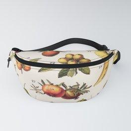 Adolphe Millot - Fruits exotiques - French vintage botanical illustration Fanny Pack