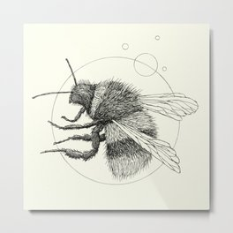 'Wildlife Analysis IX' Metal Print