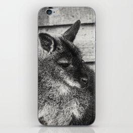 Thoughtful Wallaby iPhone Skin