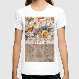 Beachcombers Seashell Paradise T-shirt