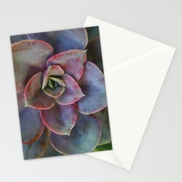 Plant Geometry Stationery Cards