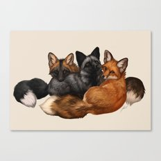 Fox Trio Canvas Print
