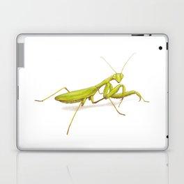 Praying Mantis by Lars Furtwaengler | Colored Pencil / Pastel Pencil | 2014 Laptop & iPad Skin