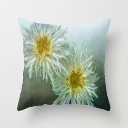 Shasta Throw Pillow