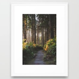 Sunset Path Framed Art Print