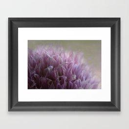 Purple Whisper Framed Art Print