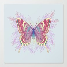 Beautiful Colorful Butterfly Design Canvas Print