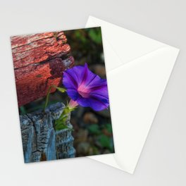 Beautify Stationery Cards