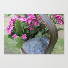 Country girl Canvas Print