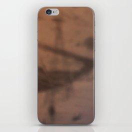 DREAMY WINTER 12 iPhone Skin