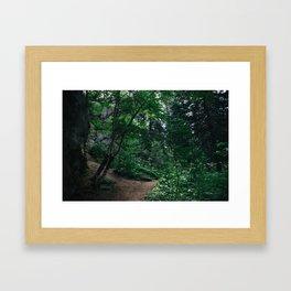 South Dakota Forest Framed Art Print