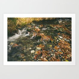 Small river stream near Buttermere. Lake District, UK. Art Print
