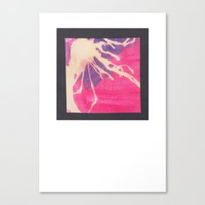 Pink and Purple Canvas Print