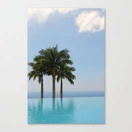 Hawaiian Oasis Canvas Print