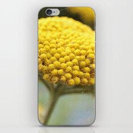 Vintage Yellow Yarrow iPhone Skin