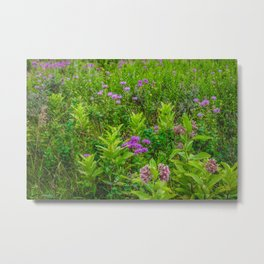 Fort Ransom State Park, North Dakota Metal Print