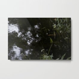 At the Place of Dreams Metal Print